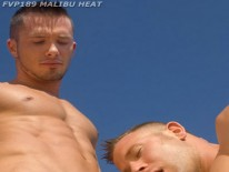 Malibu Heat from Falcon Studios