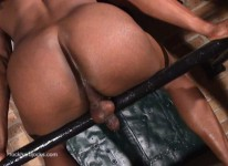 Thick Kash Cum from Hard Dick Project