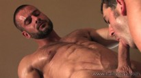 Hairy Stud Sex from Hairy Boyz