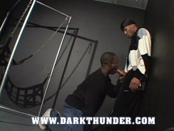 Sex Swing Ramming from Dark Thunder