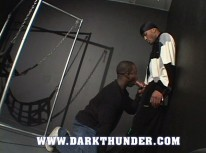 Fucked In A Sling from Dark Thunder