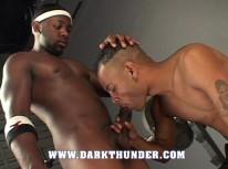 Black Studs Fucking from Dark Thunder