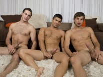 Randyblue 3way from Randy Blue