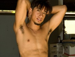 Hawaiian Hunk Solomon from Island Studs
