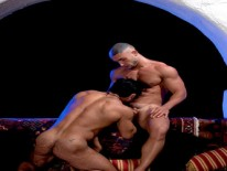Arabesque from Raging Stallion