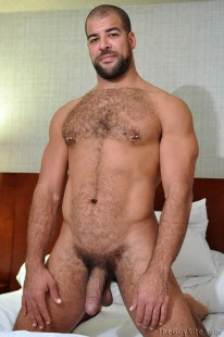 Roman Wright from The Guy Site