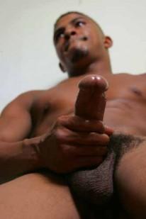 Tiger Tyson from Tiger Tyson