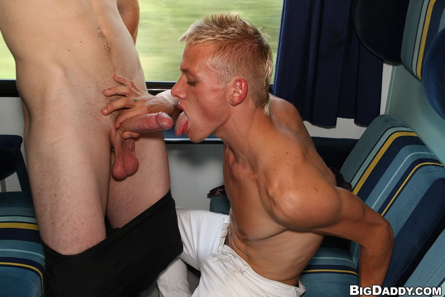 Sex In Train Gallery 29