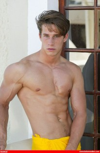 Yves Carradine Pinup from Bel Ami Online