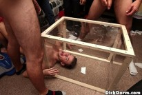 Penalty Box from Dick Dorm