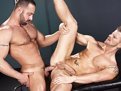 Impact from Raging Stallion