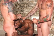 Deryk Reynolds Troy Sam Swift from Next Door Ebony
