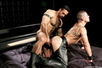 Dominus from Raging Stallion