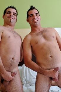 Fraternal Twins from The Guy Site