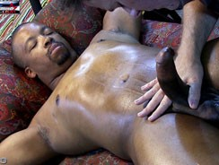 Causa 470 Darius from Club Amateur Usa