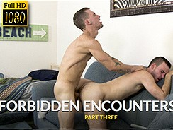 Forbidden Encounters 2 from Icon Male