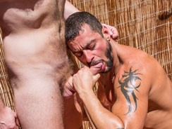 gay sex - David Avila from Timtales