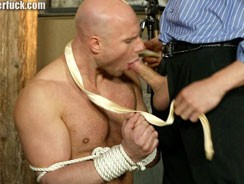 gay sex - Gangster Fuck 166 from Gangster Fuck