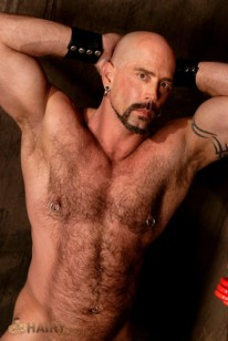 Shane Alexander from Hairy Boyz