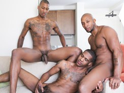 gay sex - Ramsees King B And Staxx from Next Door Ebony
