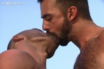 International Studs from Sex Gaymes
