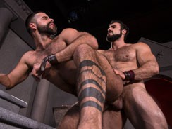 Erectus from Raging Stallion