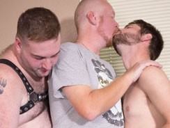 Pup Kairo, Tiger And Gabe Duv from Bear Films