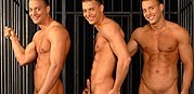 Behind Bars from Visconti Triplets