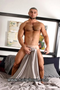 Francois Sagat from Hairy Boyz