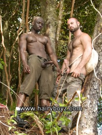 Collin And Jay from Hairy Boyz