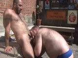 Hairy Bears Outdoors