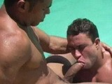 Poolside Heat Ramon -