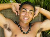 Buff Hawaiian Stud Kah