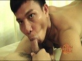 Asian Newbie Joey