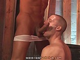 Big Cock Deep Throat