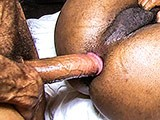 Hung Bareback Muscleda