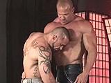 Horny Bodybuilders