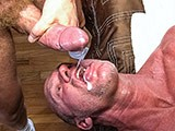 Hung Cock and Muscleda