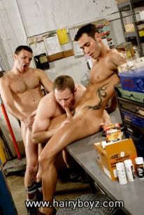 Marcos, Bo And Alexy from Hairy Boyz