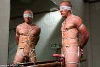 Christian And Wolf from Bound Gods