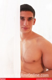 Martins Chiselled Body from Bel Ami Online