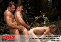 Reload from Colt Studio