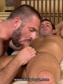Hairy Stud Sex from Hairy Boyz