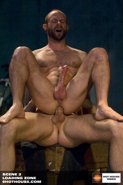 Gay Porr zon