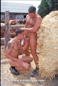 Farm Boy Orgy from High Octane