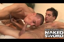 Swallow from Naked Sword