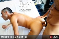 Naor Tal Collection from Lucas Entertainment
