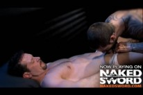 Porn Stars In Love from Naked Sword