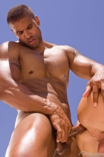 Dripping Wet 3 from Falcon Studios