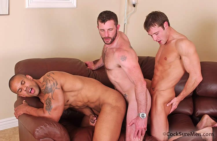 Hot Gay Guys Meet For Orgy